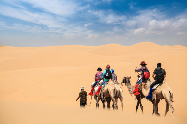 mongolian desert travel