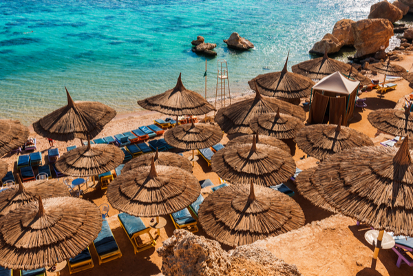 red sea beaches and resorts